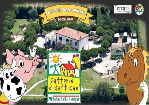 la_collinara_fattoria_degli_animali
